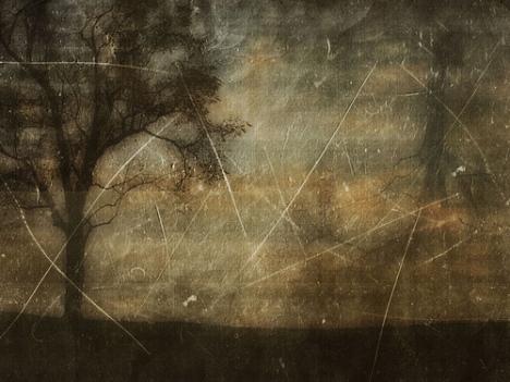 chrysti-hydeck-november