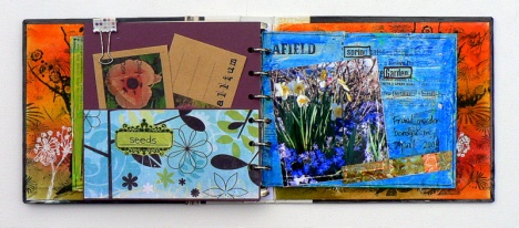 pam thorburn journal2
